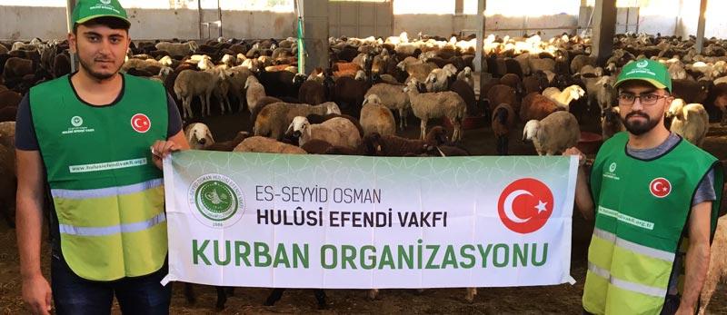 hulusi-efendi-vakfi-kurban-organizasyonu-2017-1